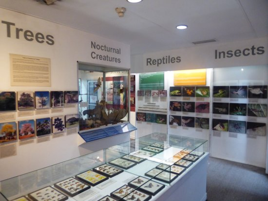 National Museum and Art Gallery: about nature