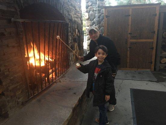 Фиш-Камп, Калифорния: Our Cottage and fire pit near lobby