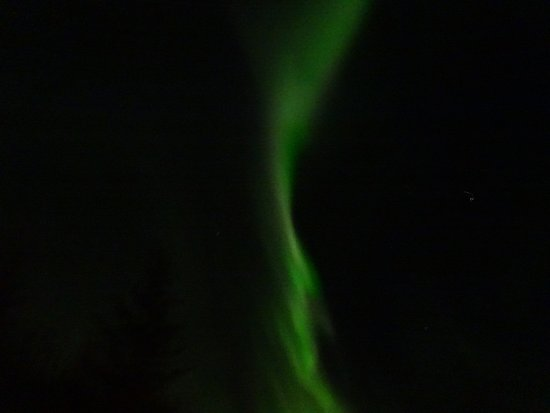BusTravel Iceland: Northern Lights out to play
