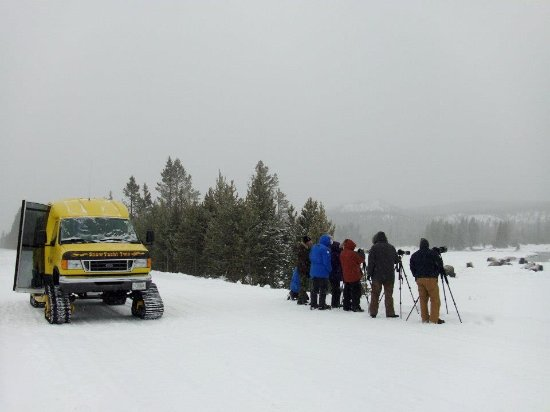 Brandin' Iron Inn: Snowcoach Tours - Experience winter like never before