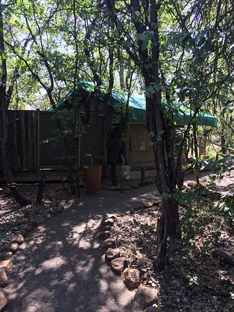 Mashatu Tent Camp: One of the tents with ensuite bathroom/shower facility