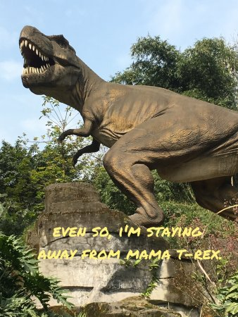 Chongqing Zoo (Chongqing Dongwuyuan): T-Rex