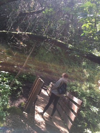 Garland Ranch Regional Park: What a beautiful place to hike and enjoy God's creation!
