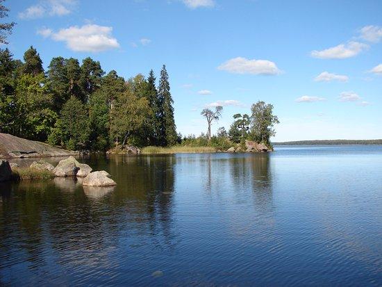 """""""Парк Монрепо"""", Историко-Архитектурный и Природный Музей-Заповедник: Лес, вода и хорошая погода, что еще надо для прогулок."""