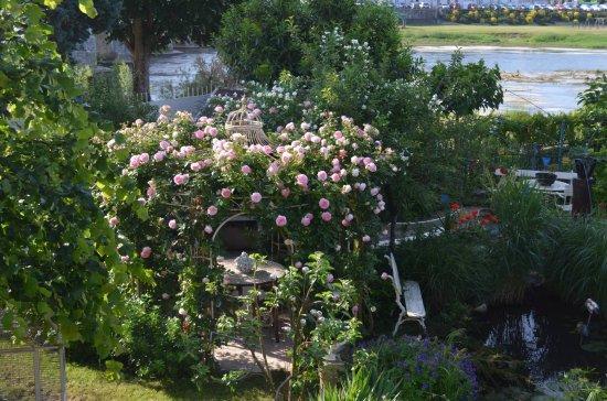 Selles-sur-Cher, ฝรั่งเศส: Le jardin sur les bords du Cher