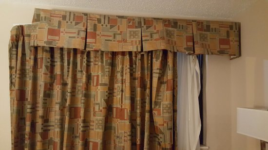 Quality Inn & Suites Detroit Metro Airport: Drapes...What the heck?