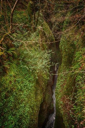 Evanton, UK: Black Rock Gorge (the devils mark)