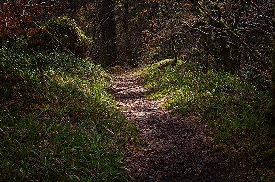 Evanton, UK: The Devils path