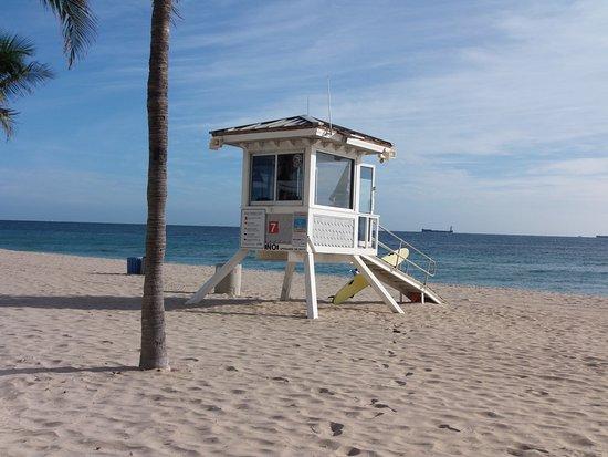 Silver Seas Beach Resort Picture