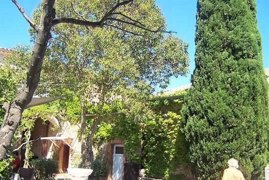 Vue de la terrasse du restaurant photo de auberge cote for Auberge cote jardin conilhac corbieres