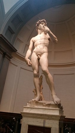 Freya's Florence Tours: Michelangelo's David - a must see!