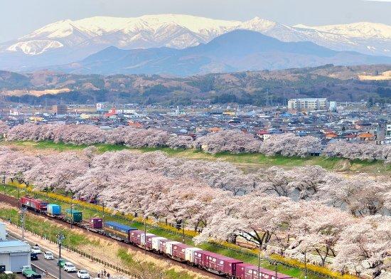 Shibata-machi صورة فوتوغرافية