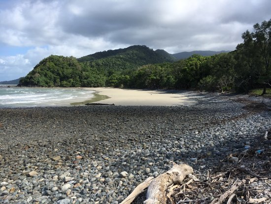 D'Arcy of Daintree 4WD Tours: photo3.jpg