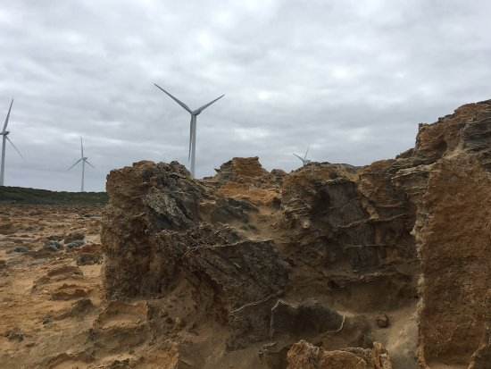 Wonderful mix of ancient and modern - Cape Bridgewater petrified forest