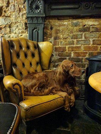 Nicky Tams Bar & Bothy: Dog friendly bar, music and food
