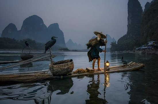 Li River Sunrise och Cormorant Bird ...