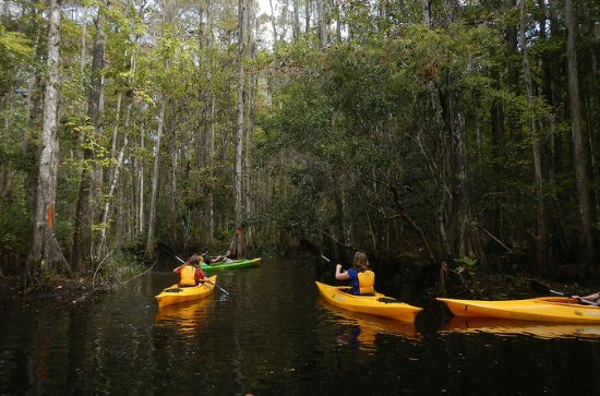 Attractions G143024 Activities Everglades National Park Florida on water in everglades
