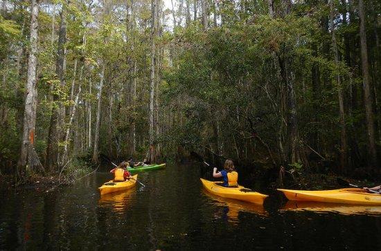 Tour Guidato di Transizione Ecologica
