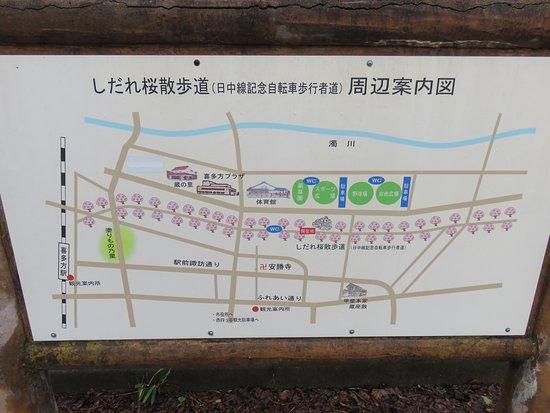 Kitakata, Japón: 3kmも桜並木が続く