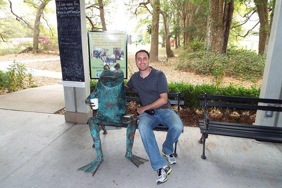 Charleston Tea Plantation: Phil with Waddy the metal frog