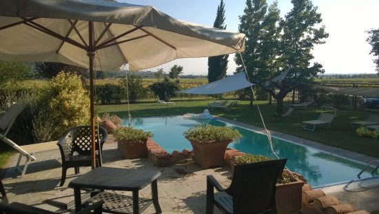 Montalla, Italien: main shared swimming pool