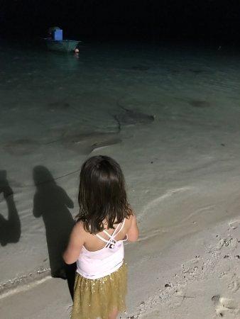 Happy Life Maldives Lodge: photo0.jpg