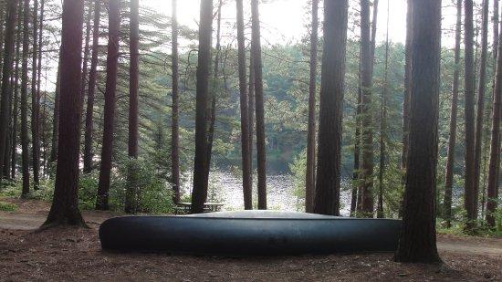 Pog Lake Campground: pog344_large.jpg