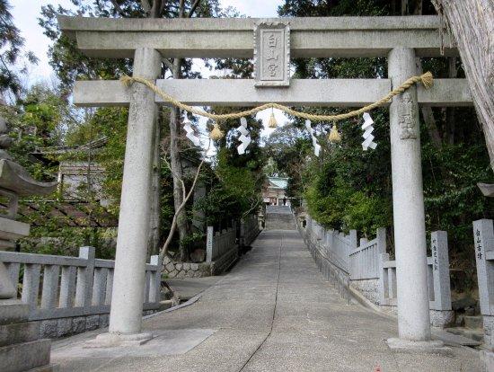 Nisshin, Japón: 鳥居の柱に彫刻が・・。境内に白山古墳があります。