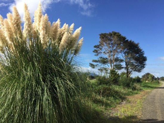 From paeroa to Te Aroha