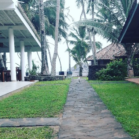 Rockside Cabanas Hotel: IMG_20170411_182851_448_large.jpg