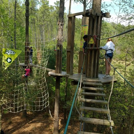 Go Ape Treetop Adventure Course: IMG_20170414_211834_large.jpg