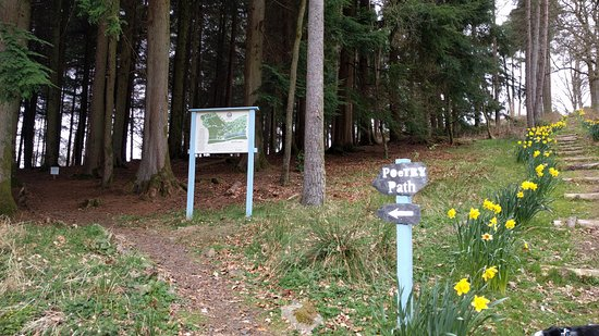 Dunkeld, UK: The start of The Corbenic Poetry Path