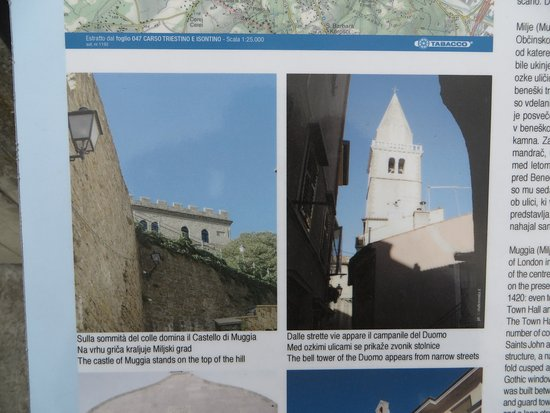 Muggia, Italia: La struttura non si addice e nenche la esposizione