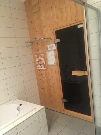 Midsland, The Netherlands: bathroom with sauna