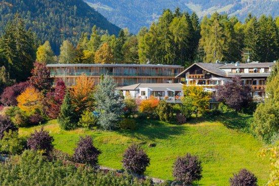Hotel Der Waldhof 的照片 - 拉納照片 - Tripadvisor