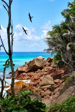 Praslin Island, Seychelles: on Tour