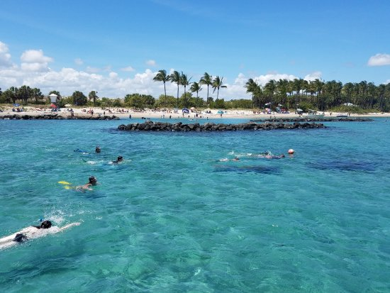 Best Places To Snorkel In Palm Beach County