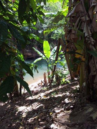 Arenal Adventures Foto