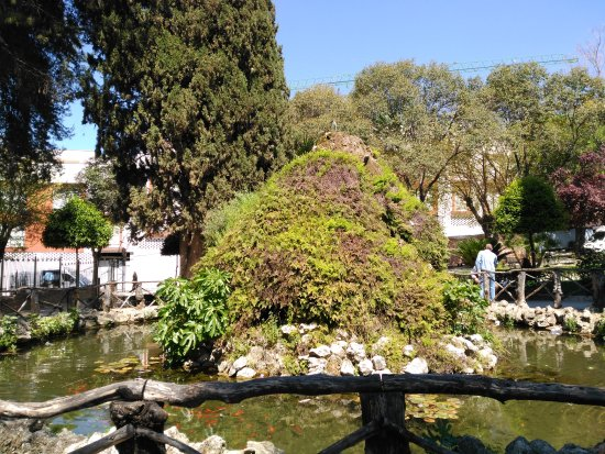 Rute, Espanha: Estanque con peces