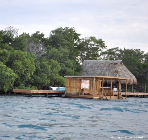 Coxen Hole, Honduras: Big French Key, Roatan