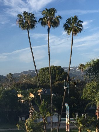 The Beverly Hilton: View from the room--not bad for this East Coaster