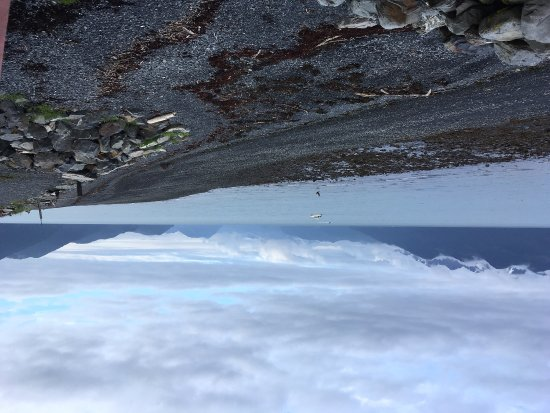 Alaska Saltwater Lodge: photo1.jpg