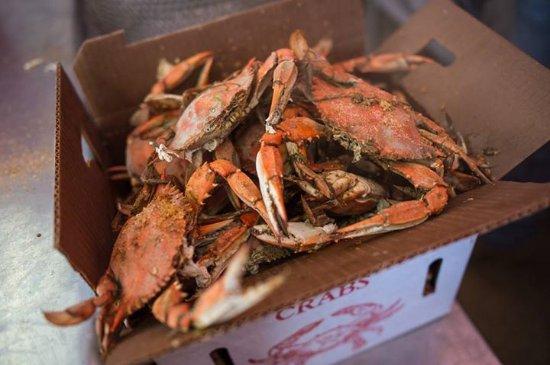 Trappe, MD: Half Bushel Male Crabs