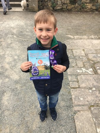 Plas Newydd Country House and Gardens: Had a great time here on a Cadbury egg hunt! The house is lovely and the grounds stunning! Great