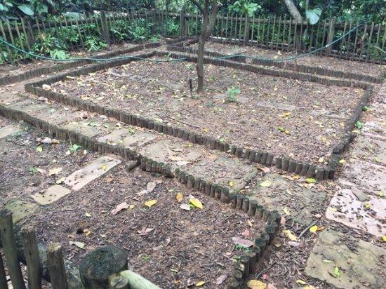Fairmont Zimbali Lodge: So called Herb Garden