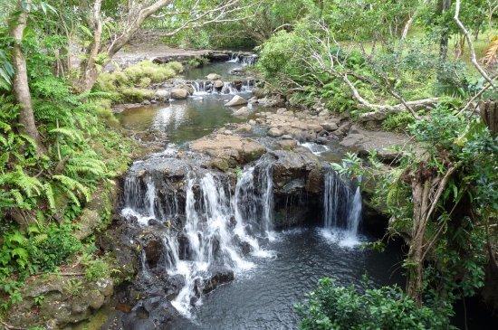Chemin Grenier: falls