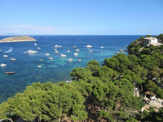 Magaluf Hotel Melia Calvia Beach Tripadvisor