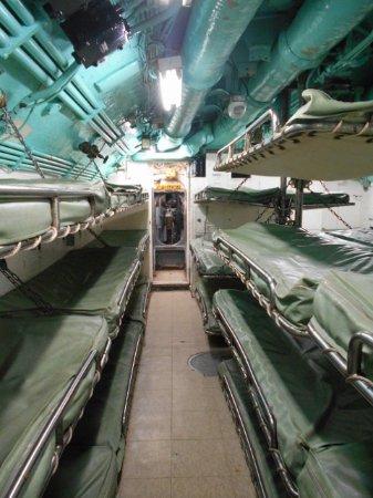 Seawolf Park: Crew sleeping area in the sub