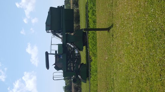 Charleston Tea Plantation: 20170414_114754_large.jpg