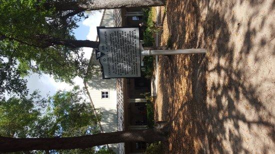 Charleston Tea Plantation: 20170414_114936_large.jpg